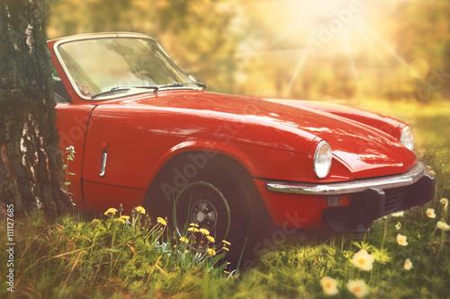 Poster Vintage voitures Oldtimer Cabrio im Sonnenschein