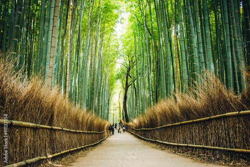 Foto op Plexiglas Bamboe Bamboo Forest at arashiyama, Kyoto, Japan.