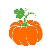 Pumpkin With Leaf. Abstract Vegetable On White Background