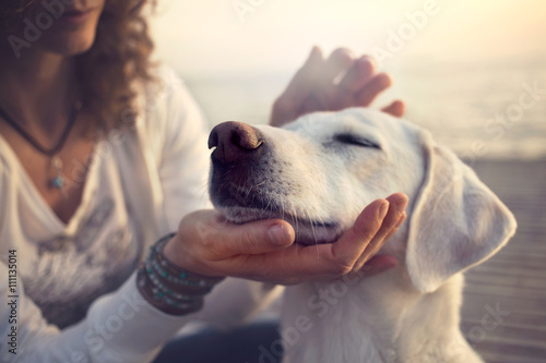 owner caressing gently her dog Poster