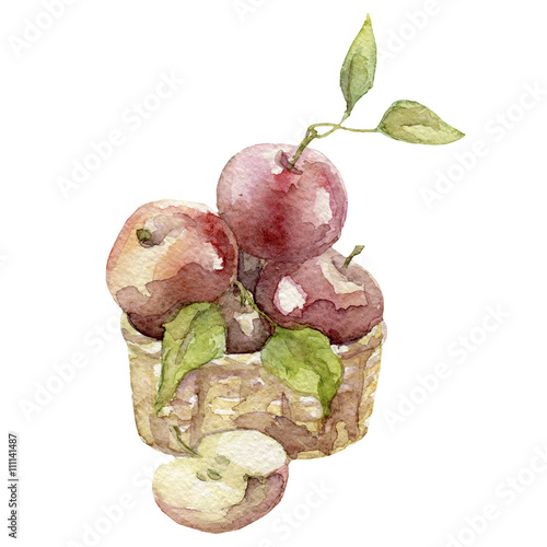 Photo  watercolor apples illustration