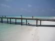 Starnd auf den Malediven mit Steg und Reiher