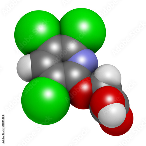 Fotografia, Obraz  Triclopyr herbicide (broadleaf weed killer) molecule.