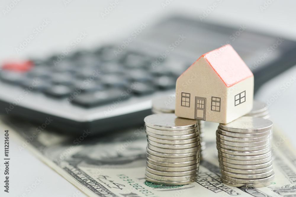 Fototapety, obrazy: House on money pillars suggesting property investment