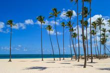 Travel In Dominican Republic. ...