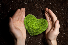 With Love And Care To Our Nature