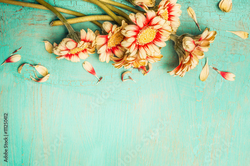 Fotografie, Obraz  Beautiful flowers bunch on a turquoise shabby chic background , top view, border