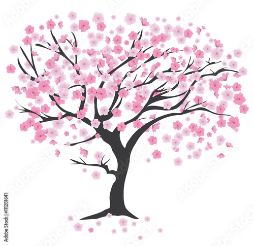 Fotografia, Obraz Cherry Tree