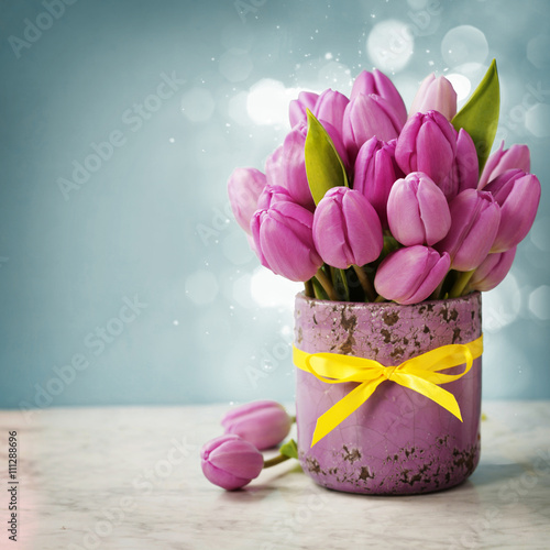 obraz dibond Purple tulips