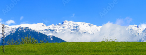 Snowy mountains with green meadow #111298241
