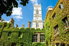 London, The Westminster Abbey Tower Seen From The  Cloister