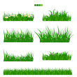 Illustrated vector green Grass with flower and leaf set with solid flat color. Long and short grass collection