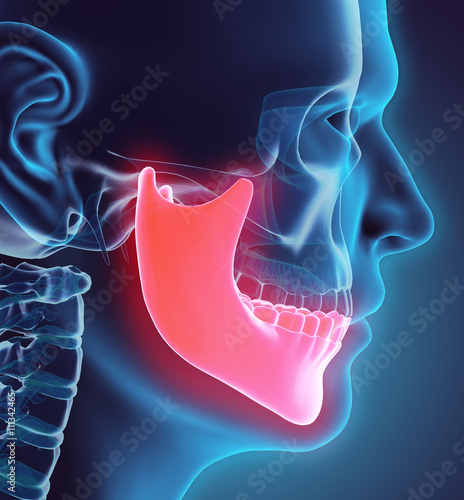 3D illustration of Mandible, medical concept. Canvas-taulu