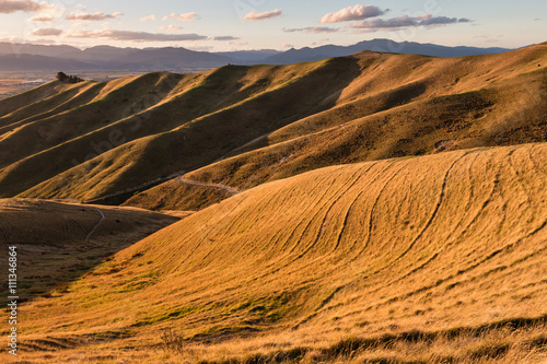 Fotobehang Heuvel sunset over grassy hills in Marlborough, New Zealand