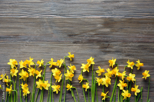 In de dag Narcis Beautiful narcissus flowers on wooden background