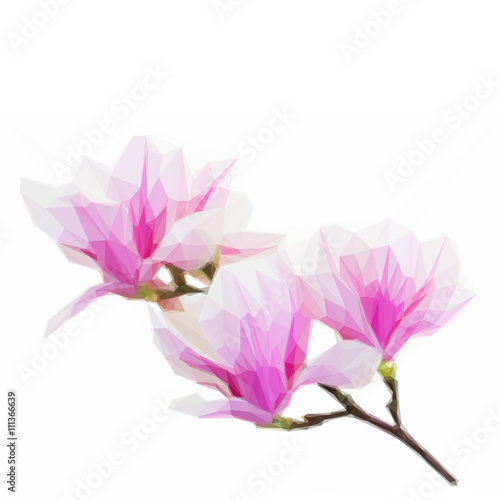 Low poly Blossoming pink magnolia Flowers