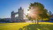 London, UK - Iconic Tower Bridge at sunrise in the morning with sunlight, tree, blue sky and green grass