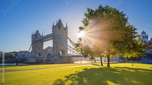 Garden Poster London London, UK - Iconic Tower Bridge at sunrise in the morning with sunlight, tree, blue sky and green grass