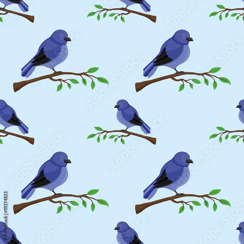 ptaki-na-galazkach