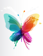 Colorful Butterfly Created From Splash And Colored Objects.