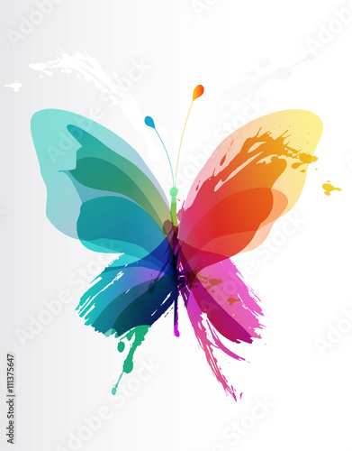 Fototapeta  Colorful butterfly created from splash and colored objects.