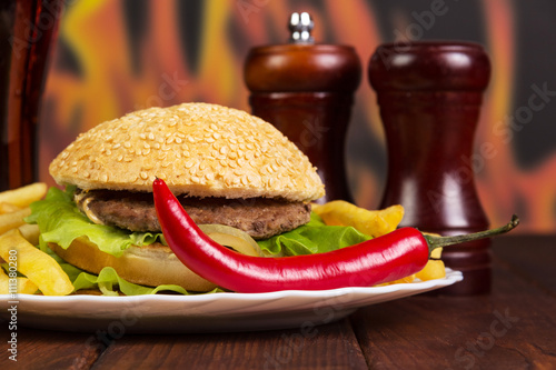 Hamburger, french fries, chili and spices on  background  flames.