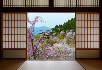FototapetaJapanese sliding doors and beautiful landscape of cherry trees in spring