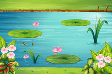 Scene With Lotus In The Pond
