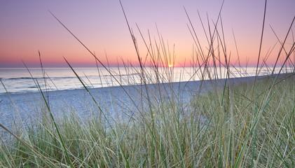 FototapetaDünengras am Ostseestrand, Sonnenaufgang am Meer