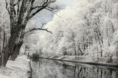 Valokuvatapetti Infrared landscape. Trees and water in park