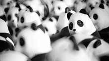 Close Up Of Panda Dolls