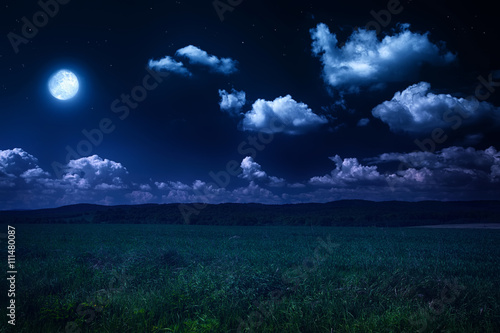 Foto auf AluDibond Nacht beautiful summer landscape, moonlit night on nature