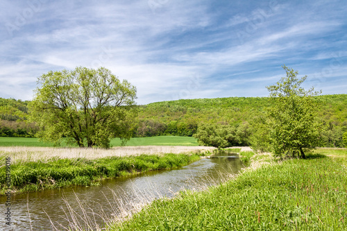 Spring landscape with green meadow, river and trees - 111499016