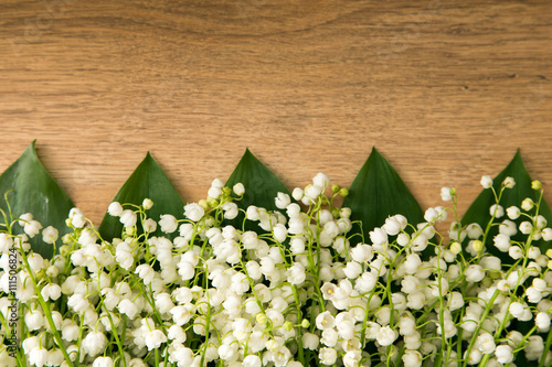 Poster Muguet de mai Lilies of the valley Beautiful small white spring flowers