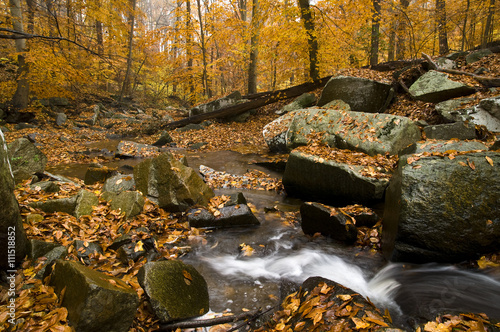 Wall Murals Melon A small waterfall surrounded by bright fall colors.