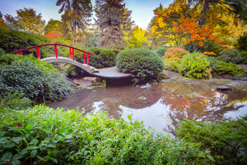 Fototapeta Red bridge in japanese green park in autumn time. Seattle.