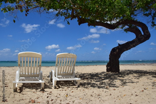 Fotografie, Obraz  Karibischer Traumstrand
