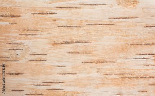 Fototapeta Background of birch bark obraz na płótnie