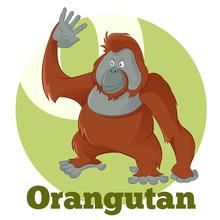ABC Cartoon Orangutan2