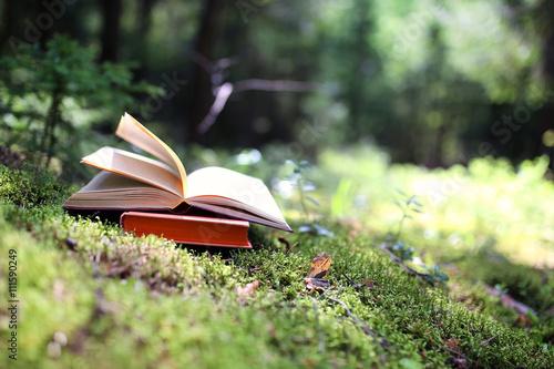Fotografie, Tablou  Open book outdoor