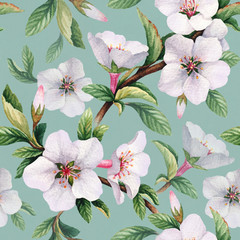 Fototapeta Do biura Seamless pattern with watercolor illustrations of cherry flowers