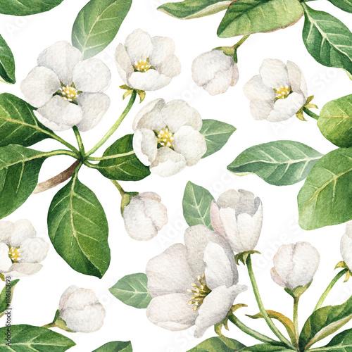 bezszwowy-wzor-z-akwareli-ilustracjami-jablczani-kwiaty