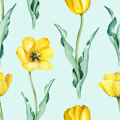 FototapetaTulip flowers. Watercolor seamless pattern