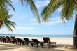 Beach chairs and coconut palm tree at the tropical beach, Pranburi, Thailand
