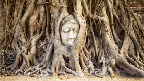 Spoed Foto op Canvas Boeddha Buddha head in the tree roots at Wat Mahathat temple, Ayutthaya, Thailand.