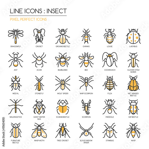 Fotografie, Obraz  Insect , thin line icons set ,pixel perfect icon