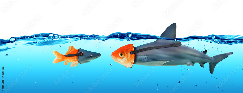 Fototapeta Deception Concept - Disguise Between Shark And Goldfish