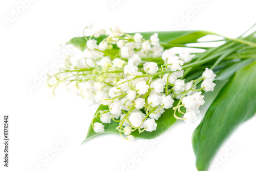 Wall Murals Lily of the valley bouquet