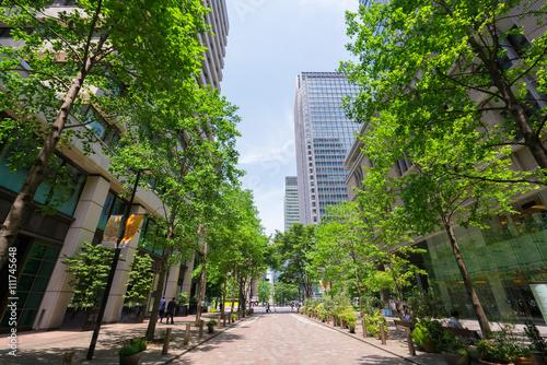 Fotografia, Obraz  東京 丸の内 丸の内仲通り 高層ビル 新緑