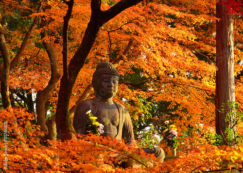 Buddha surrounded by autumn leaves, Kyoto Japan.